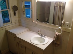 before bathroom mirrors and vanity rockandnest