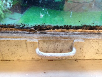 before mildy bathroom window closeup rockandnest