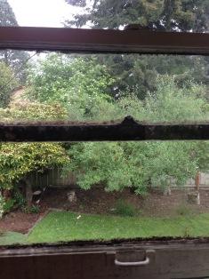 before moldy bathroom window rockandnest