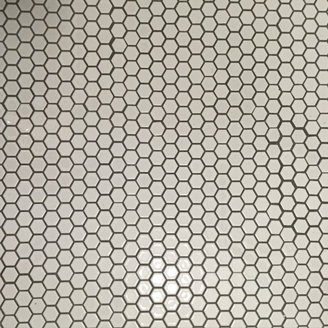 imperfect white hex tile gray grout rock and nest.JPG